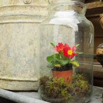 Large Glass Storage Jar
